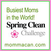 Busiest Moms in the World Spring Clean Challenge Master Bedroom