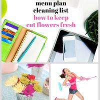 How to Keep Cut Flowers Fresh, Menu Plan Cleaning List