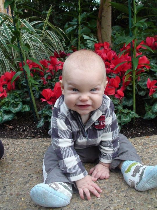 Baby_at_Longwood_Gardens