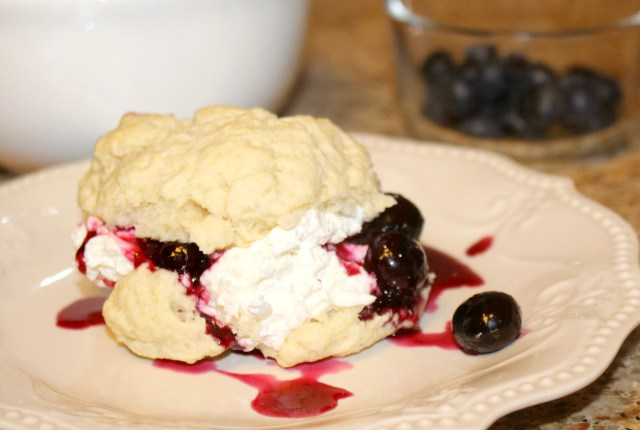 Fresh-from-florida-blueberry-shortcake-recipe-easy-biscuits-from-scratch