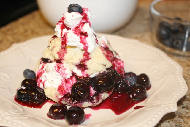 Fresh-from-florida-blueberry-shortcake-recipe