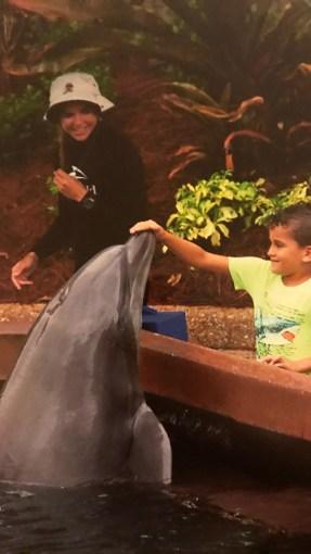 Dolphin-Experience-sea-world