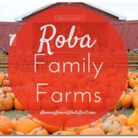 Fall Attractions in PA: Roba Family Farms #NEPA