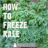 How to Freeze Fresh, Raw Kale