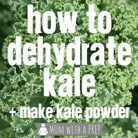 How to Dehydrate Kale for Kale Chips