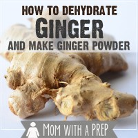 How I Preserve Food: How to Dehydrate Ginger Root and Make Ginger Powder