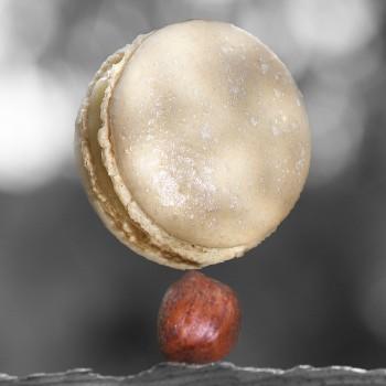 macaron truffe blanche noisette pierre hermé