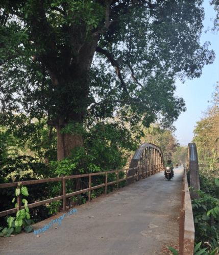 Jembatan Desa