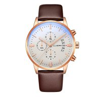 Watch, Men wrist watch,Men's Luxury Business Casual watch, Stainless Steel case,Waterproof ,Genuine Leather Quartz Watch (Brownwhite)