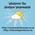 Whatever The Weather Wednesday Linky #1