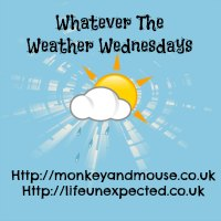 Whatever the weather linky