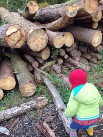 toddler logpile