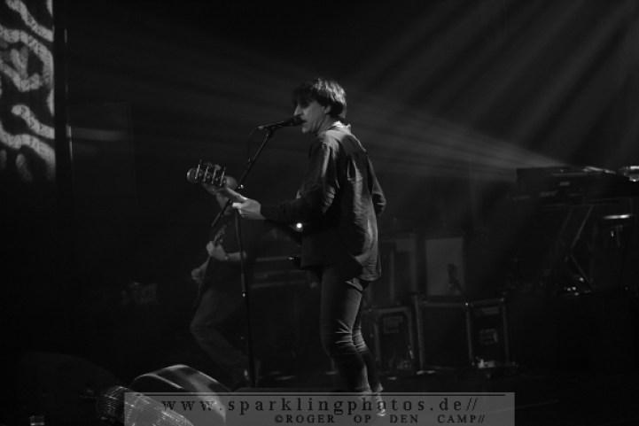 2013-02-01_Grauzone_Festival_-_Chameleons_Vox_-_Bild_009.jpg