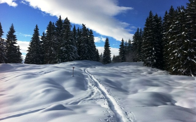 Loved the snowshoeing at Silbertal on the top of the mountain, very peaceful!