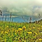 Montseny Natural Park:  A Slower Way of Life