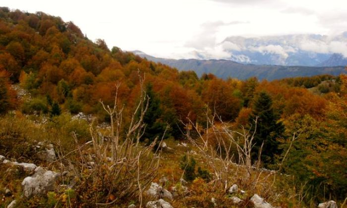 Fall is an especially beautiful time to hike Mt Matajur.