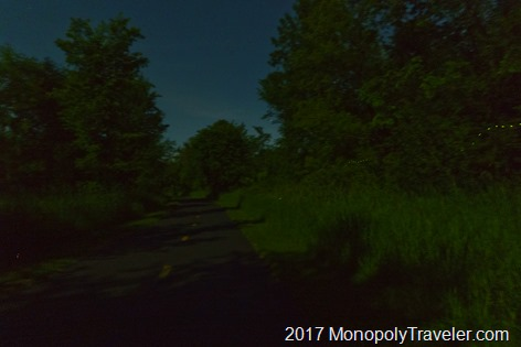 Fireflies following the trail home
