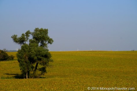 Prairie Breezes