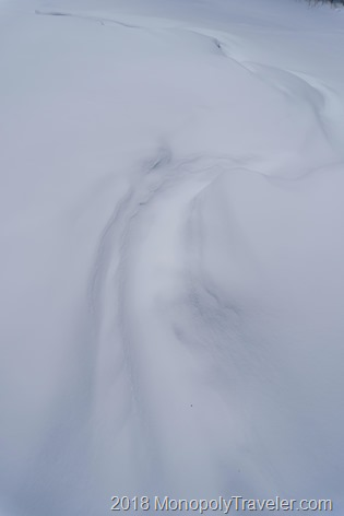 The trail of the Ice Dragon as it walks through the snow