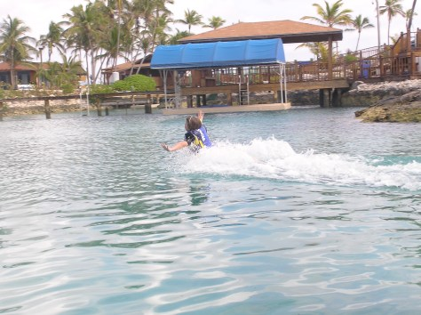 Being pushed by a dolphin