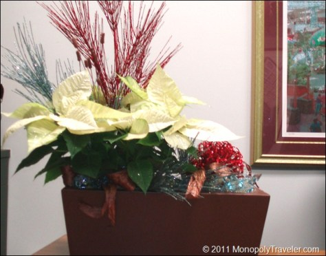 A Dressed Up Poinsettia