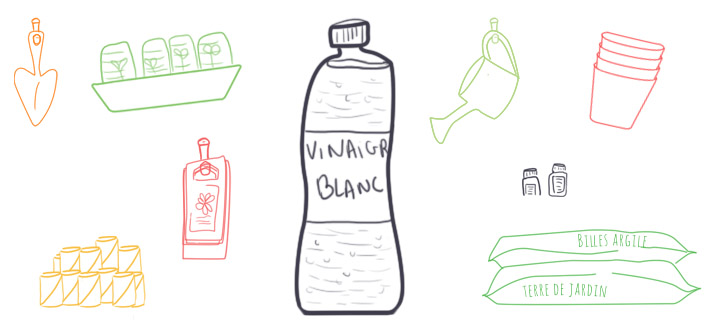usage du vinaigre blanc au jardin