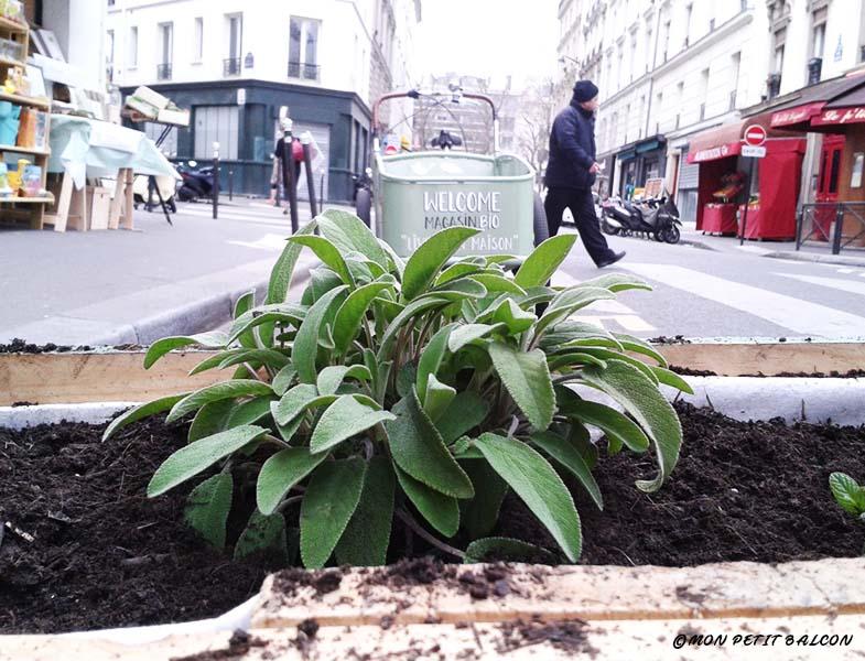 48h de l'agriculture urbaine, welcome bio