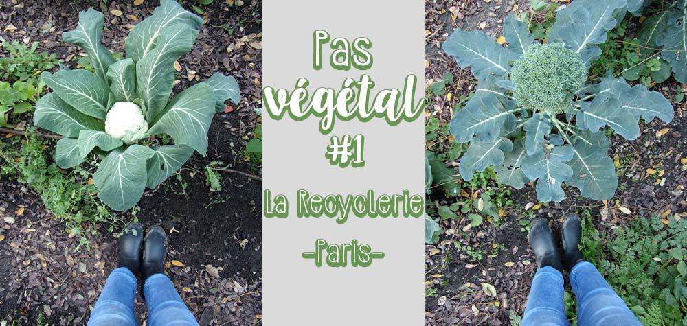 Pas végétal #1 à la découverte de La recyclerie ferme urbaine en plein Paris