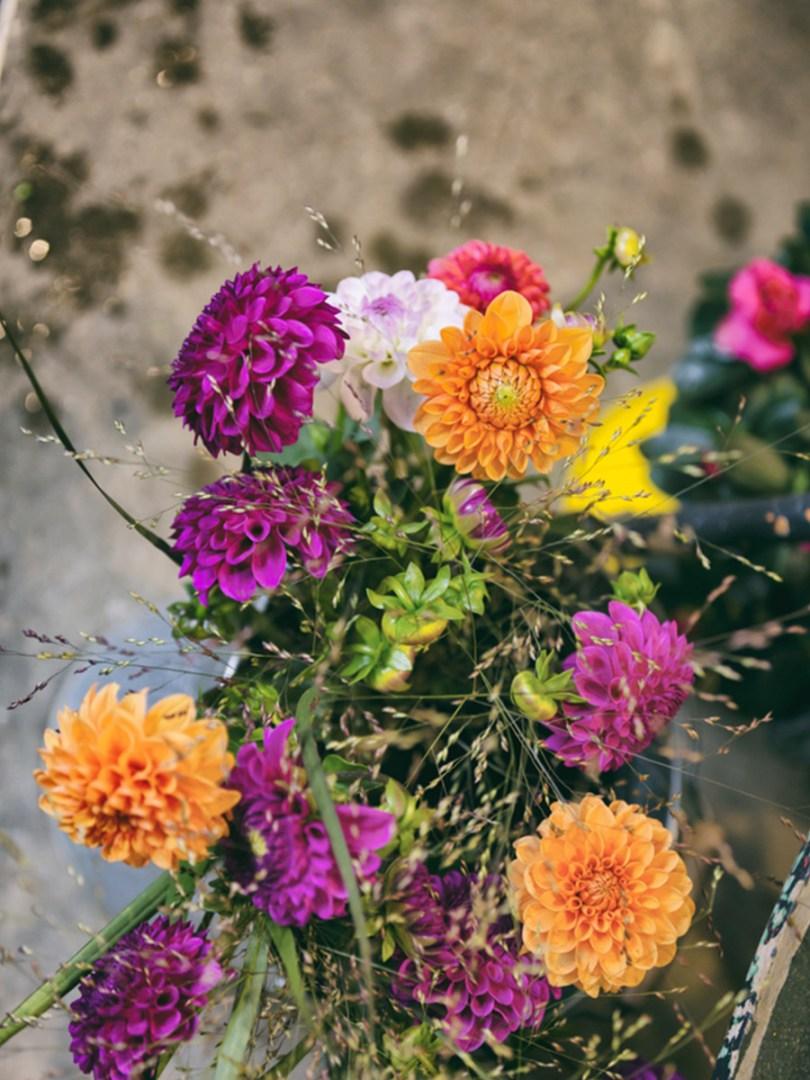 Le dahlia en bouquet, mariage, compositions, variétés locales et de saison