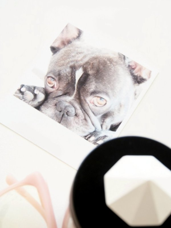 Printics-DIY-Photos