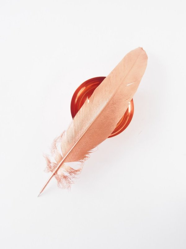 DIY-Feather-Pen-copper