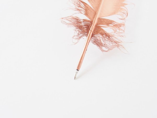 Feather pen DIY