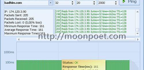 指令圖形化的網路檢測工具 GoPing 1.0