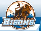 bisons-logo-new.png