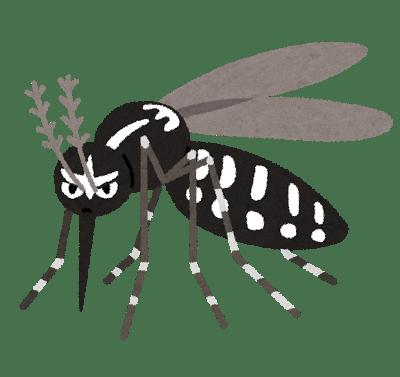 bug_hitosujishima_ka