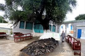 רבי עמרם - ציון קבר