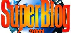 imagine-superblog-2011-christian-herzug