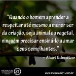 reflexao frase albertschweitzer citao amor paz