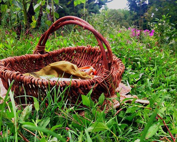 IMG_1401-apple-basket