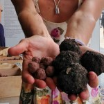 Mudballs and Seedballs, Mudballs & Seedballs at the New Museum w Anne Apparu for World Health Day