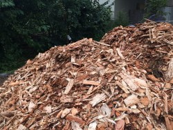 woodchips for carving
