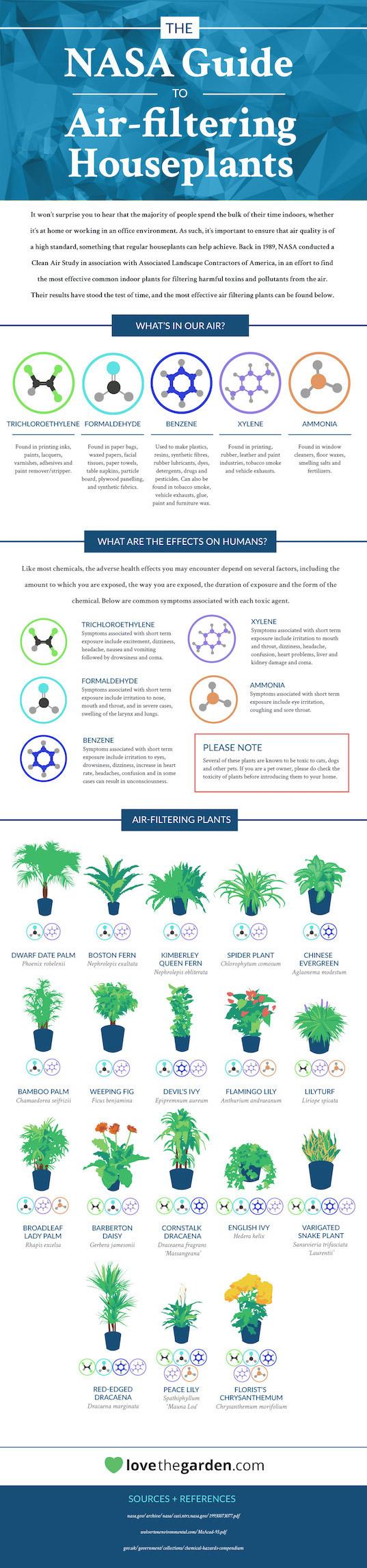 chart-indoor-plants.jog