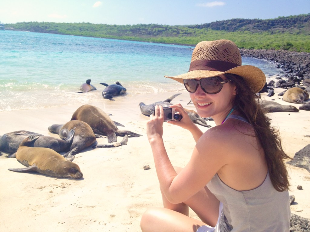 Photographing sea lions in the Galapagos.