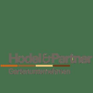 Hodel&Partner Gold Partner_50x50-01
