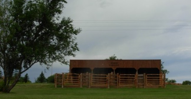 Horse Lodging