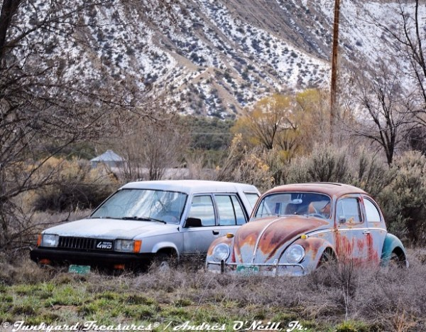 VW Beetle Volky Toyota Tercel Four Corners Cortez Colorado Andres O'Neill photo