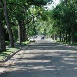 blvd trees 640