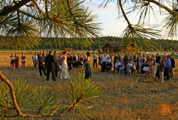 wedding ceremony through pine boughs