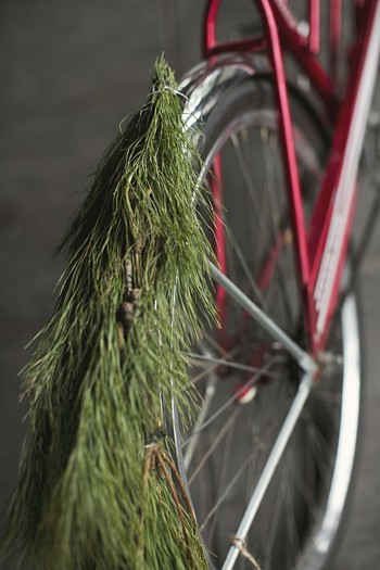 holiday wedding bike // Holiday Wedding Via http://mountainsidebride.com