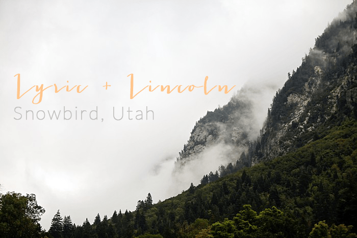 Snowbird Utah Wedding Logan Walker Photography